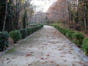 parco_urbano_camaldoli